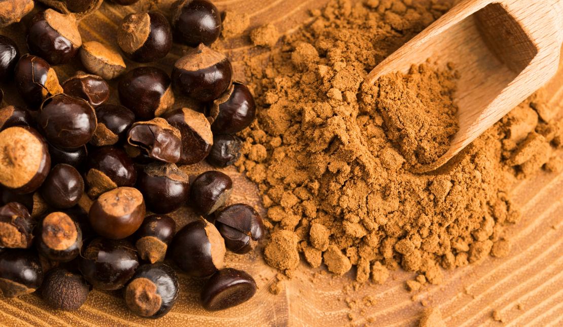 Koffein - hoher Anteil in der Guaranapflanze.